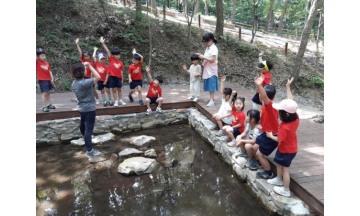 화순군, 전 국민 대상 숲해설·유아숲 프로그램 운영