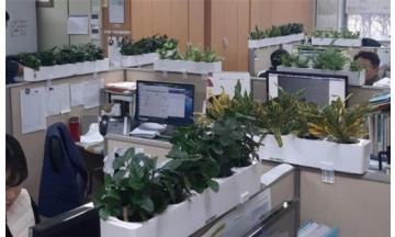 나주시, 공기정화식물 활용 '그린 스쿨·오피스'시범 운영한다