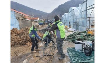 NH농협은행 대손보전기금부, 농촌일손돕기 봉사활동 실시