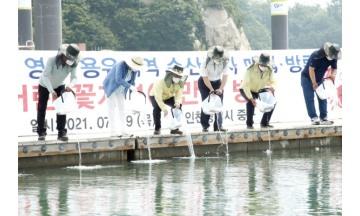 인천 중구, 서해안 꽃게 자원 조성 선봉에 서다