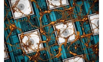 삼성전자, '추론'까지 하는 차세대 '뉴로모픽 반도체' 비전 제시